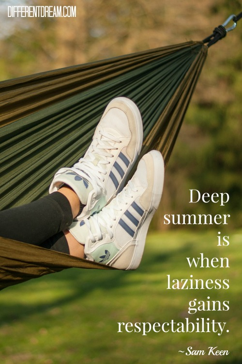 Deep summer is when laziness gains respectability. ~ Sam Keen