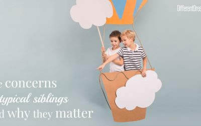 Concerns of Siblings of Children with Special Needs