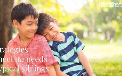 Strategies to Meet the Needs of Typical Siblings